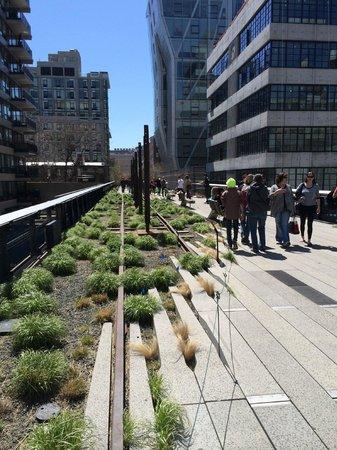 High Line: The High Lline