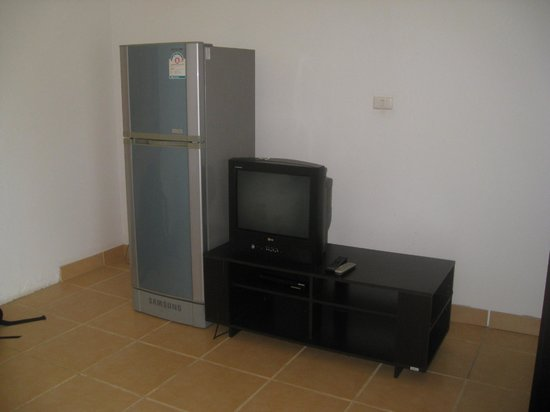 Buddha Lounge: Our fridge and TV - private room.