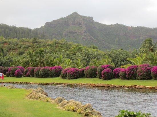Smith Family Garden Luau: Gorgeous grounds