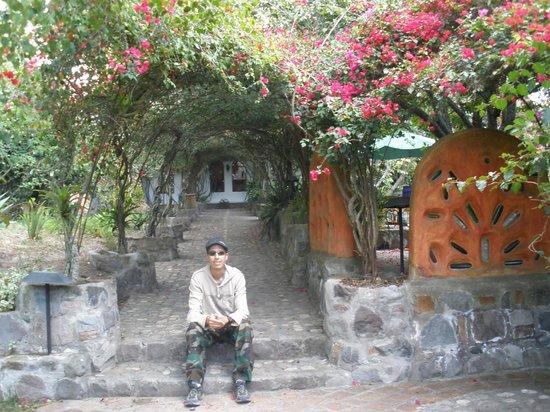 Hosteria & Spa Pantavi: Flowers tunnel