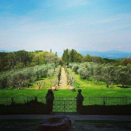 Villa Mangiacane : View Towards Florence