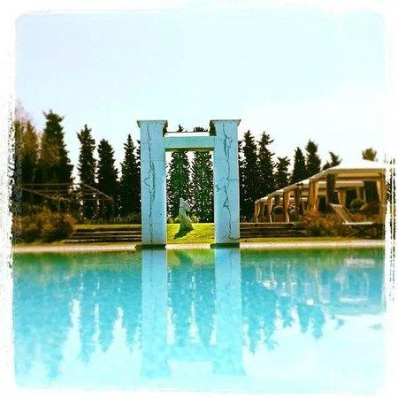Villa Mangiacane : Pool