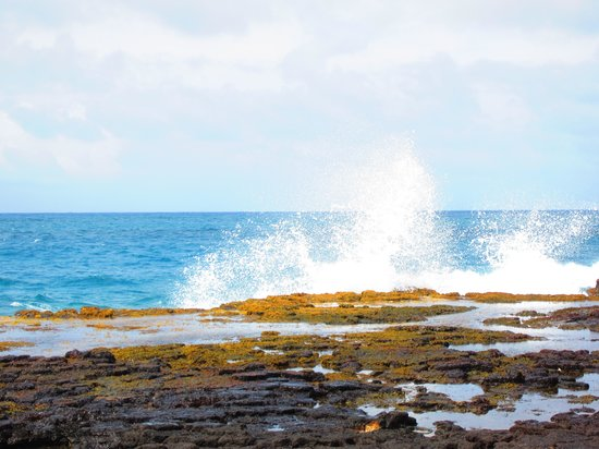 Kauai Photo Tours : Ocean and lava rocks