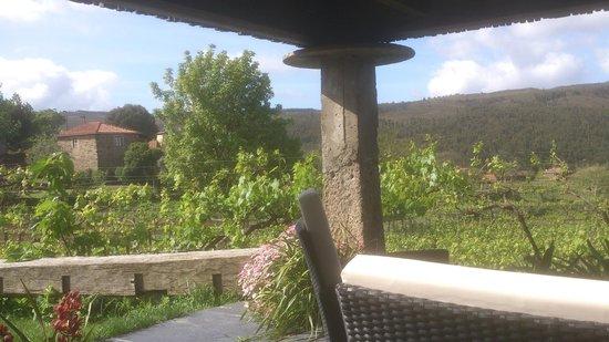 Casa Valxisto - Country House: jardin