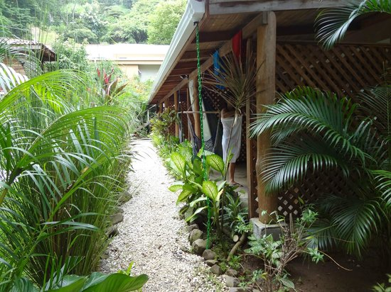 Hotel Raratonga : Chemin
