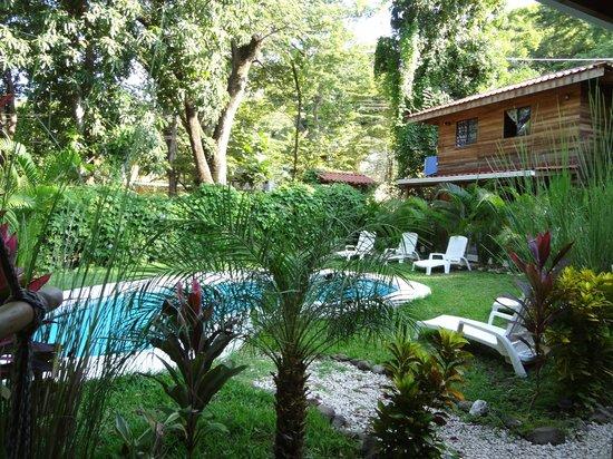 Hotel Raratonga : Piscine