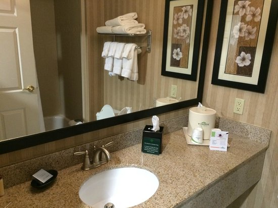 Wingate by Wyndham Charlotte Airport South/ I-77 Tyvola: Amenities