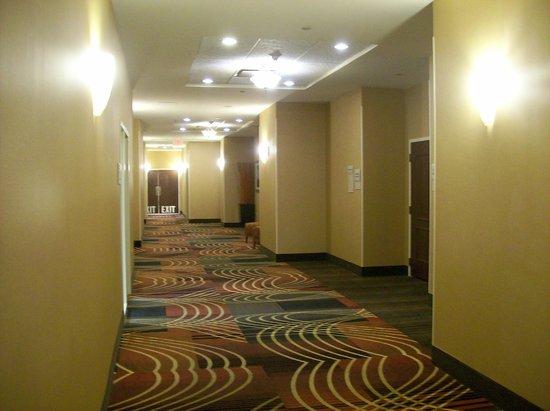 Outside Of The Ballroom Corridor Picture Of Hilton Garden Inn Greenville Greenville