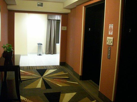 Elevator area picture of hilton garden inn greenville greenville tripadvisor for Hilton garden inn greenville sc