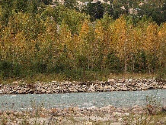 Rakcham: The amazing colors at level with Baspa River.