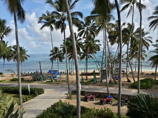 Hotel Alisei : view to the beach