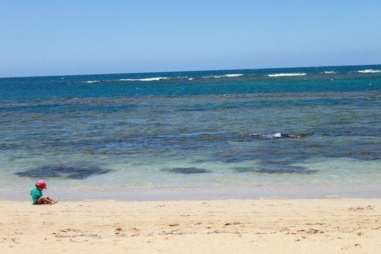 Hotel Alisei : Beach
