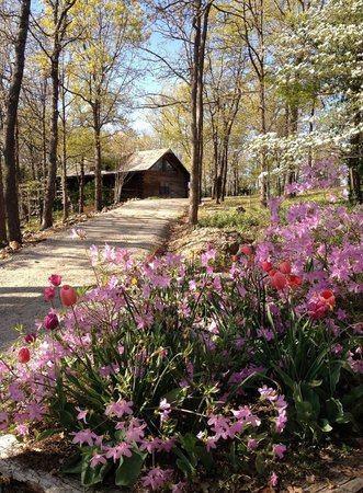 Cherokee Mountain Log Cabin Resort