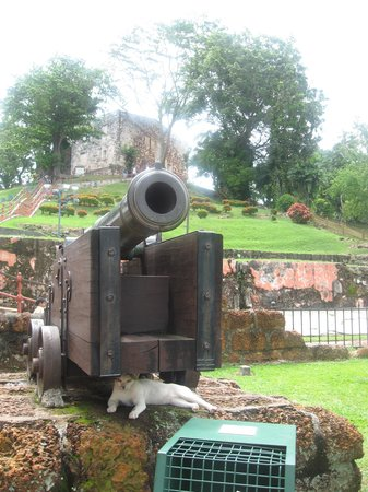 A Famosa Fort: Cannon Cat