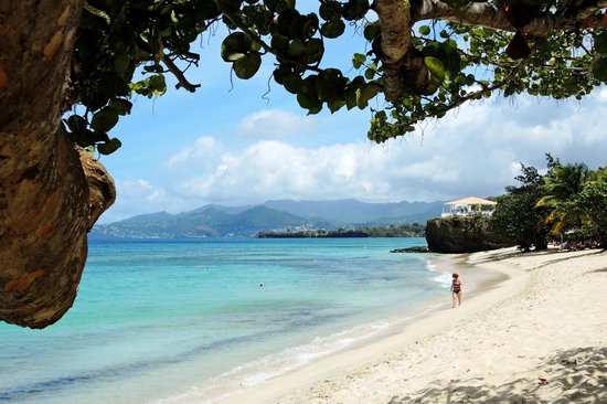 Grenadian by Rex Resorts: View from beach in front of our rom
