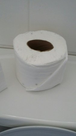Mowbray Court Hotel : Moudly toilet roll