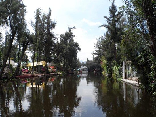 Floating Gardens of Xochimilco: Canais de Xochimilco
