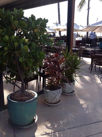 Hemingway's Restaurant : Nice atmosphere