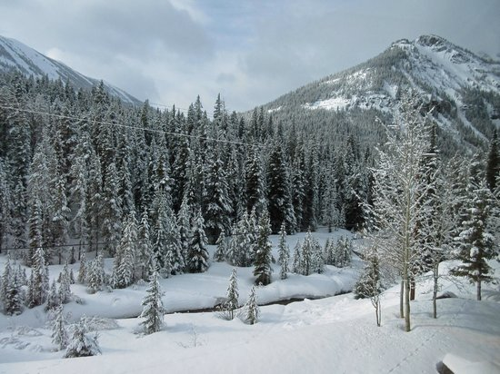 Soda Butte Lodge: Winter view from Creek side rooms
