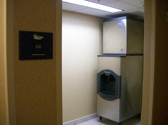 Homewood Suites Tampa Brandon: Ice Vending Machine