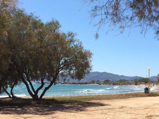 Thalassamou : Piso Alyki beach.