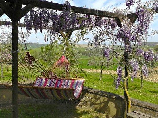 Fonte Bertusi: hammocks