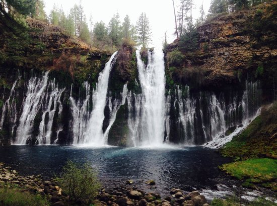 McArthur-Burney Falls Memorial State Park : Majestic! So worthwhile!