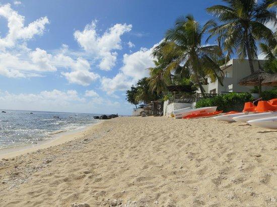 Recif Attitude: Beach Le Recife