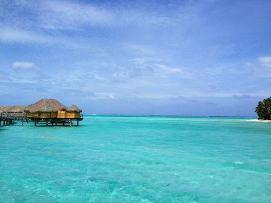 Le Taha'a Island Resort & Spa: Bluest water I've ever seen
