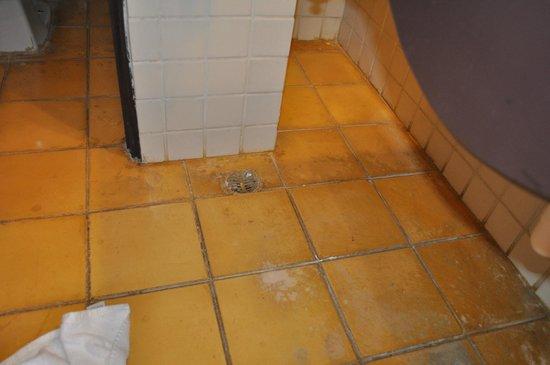 Catalonia Gran Dominicus: bathroom