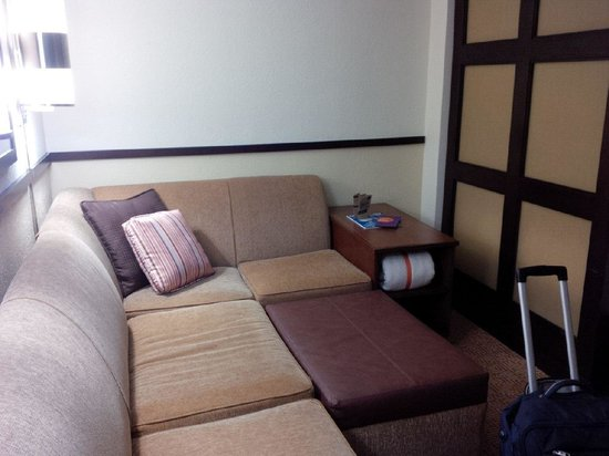 Hyatt Place Atlanta/Downtown: corner sofa