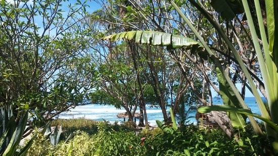 Florblanca Resort: Beach view