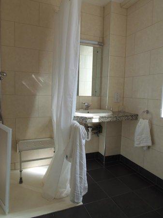President Hotel: Doccia e lavandino accessibili disabili