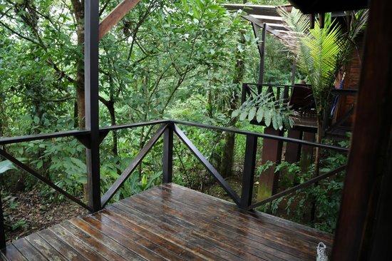 Rio Celeste Hideaway Hotel : Patio