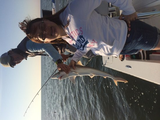 Off The Hook Fishing Charters: Reef shark