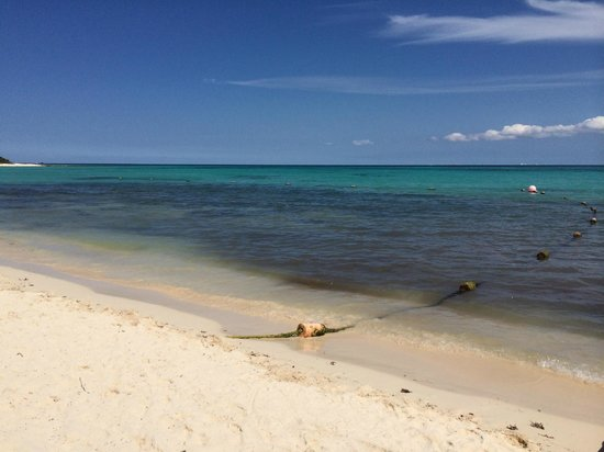Paradisus Playa Del Carmen La Esmeralda: Gorgeous water with ropes that helped identify less rocky areas for swimming