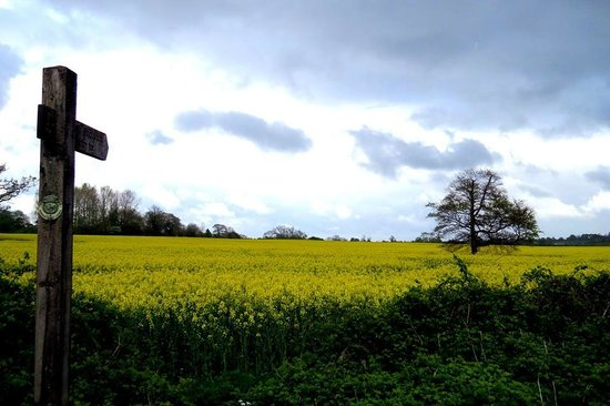 Beaconsfield Farm Self Catering : Nearby views