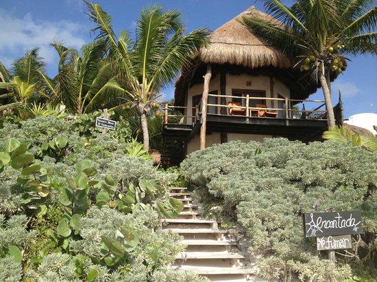 Encantada Beachfront Boutique Hotel : View of room