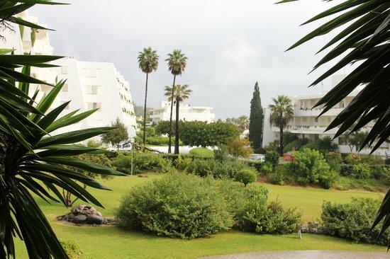 Hotel Guadalmina Spa & Golf Resort: Территория отеля