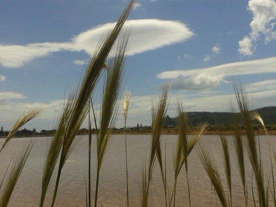 Il Locandiere: laguna