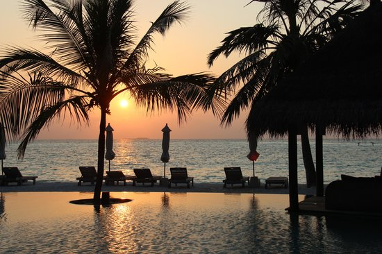 Gili Lankanfushi Maldives : Piscina