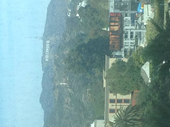 Loews Hollywood Hotel : view from the gym