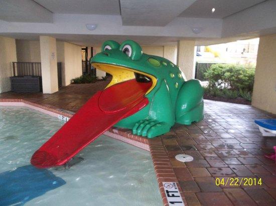 Sea Crest Oceanfront Resort : frog slide in kiddie area