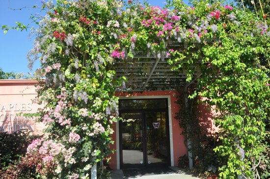 Naples Botanical Garden : The lovely entrance