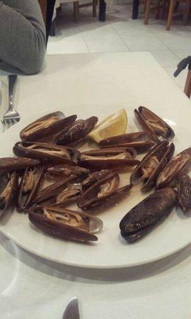 Alcanar, Spain: Dàtils de Mar / Dátiles de Mar / Date Sea