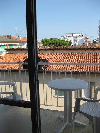 Villa Veneta: Вид из окна