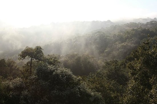 Utopia in Africa: View from the room on a misty morning