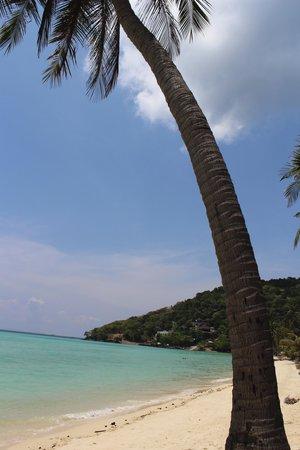 Phi Phi Island Village Beach Resort: praia do hotel