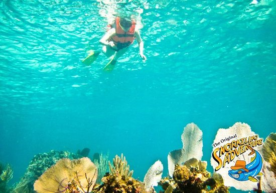 Cancun Snorkeling Adventure Beach Club Picture Of The
