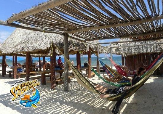 The Original Snorkeling Adventure: Cancun Snorkeling Adventure Hammocks